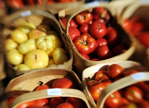 Heirloom tomatoes, just in from the field